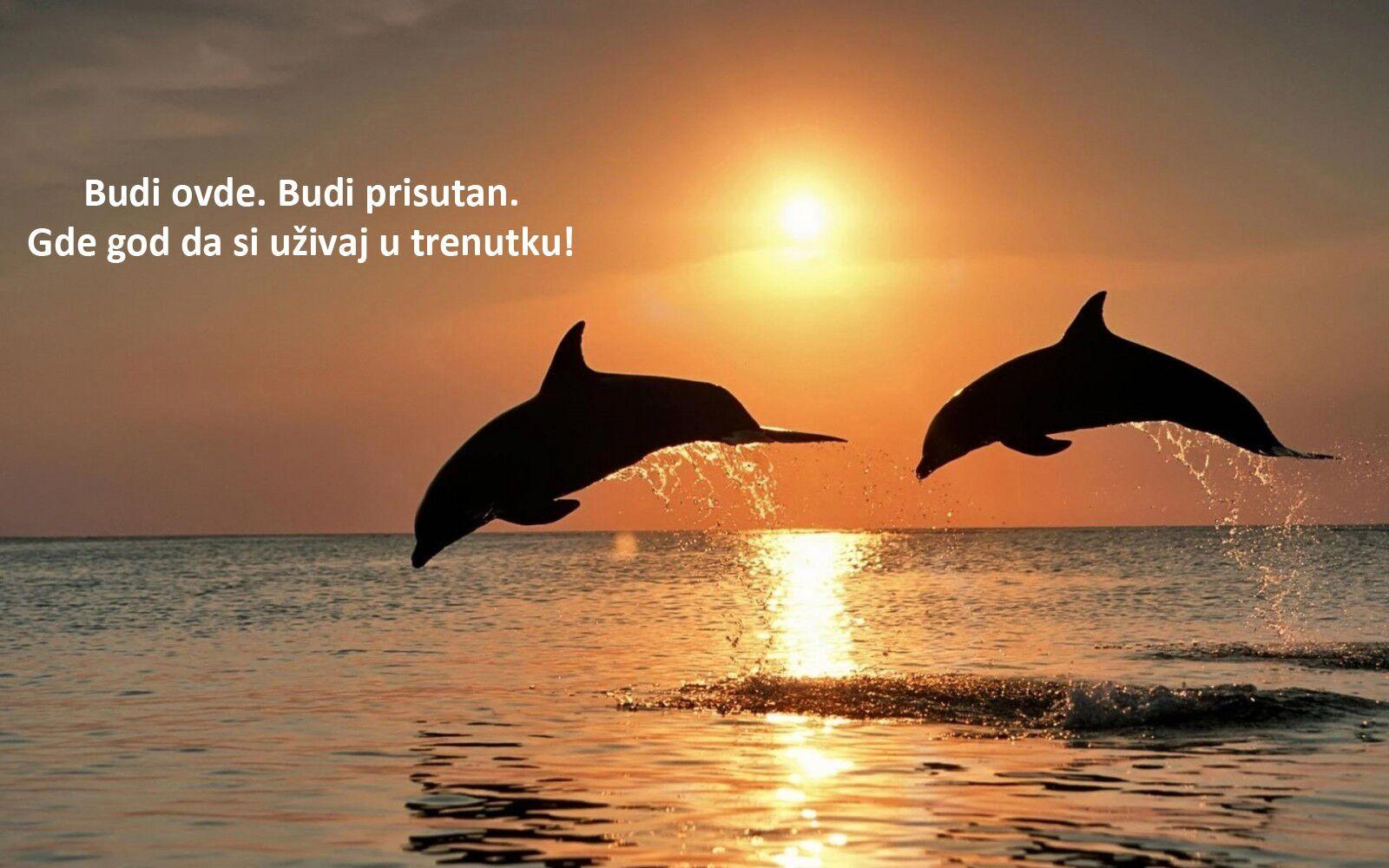 Read more about the article Praktičan vodič za upotrebu sadašnjeg trenutka